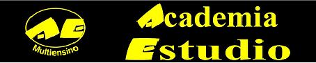 Academia Estudio