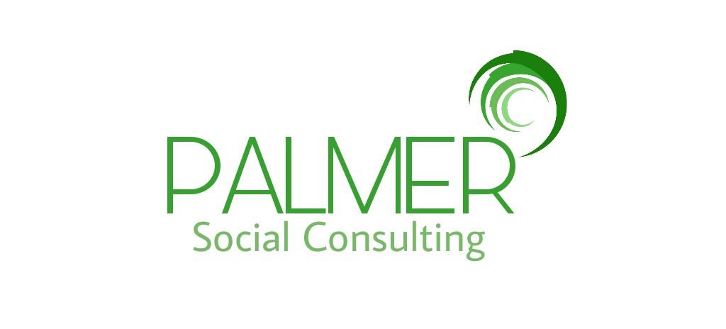 PALMER CONSULTORIA SOCIAL